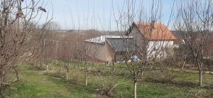 Domaćinstvo sa poljoprivrednim zemljištem